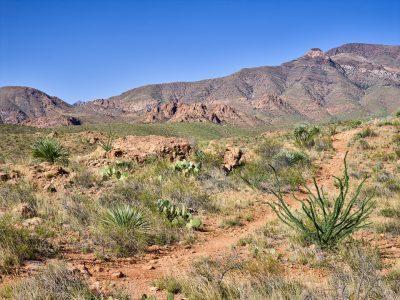 El Paso Desert Landscape