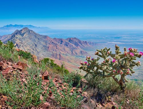 Landscape Photography of Franklin Mountains State Park