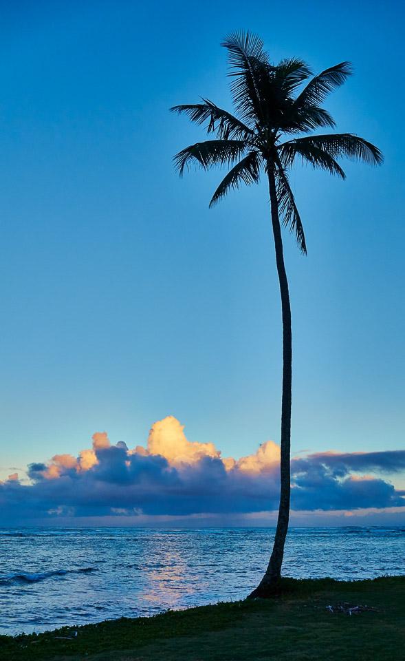 hawaii-2014-03
