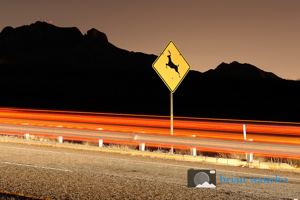 Deer Crossing sign in El Paso