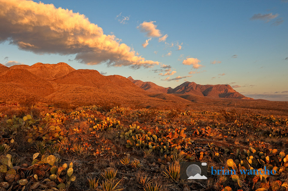 Photo of the Week - Castner Range at Sunrise