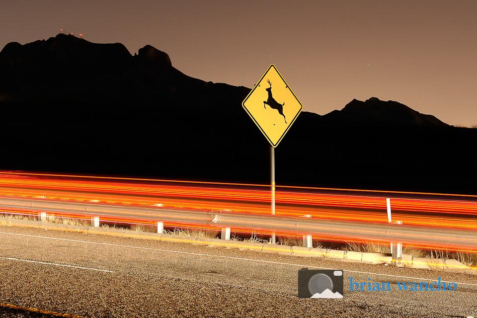 Deer Crossing sign in El Paso